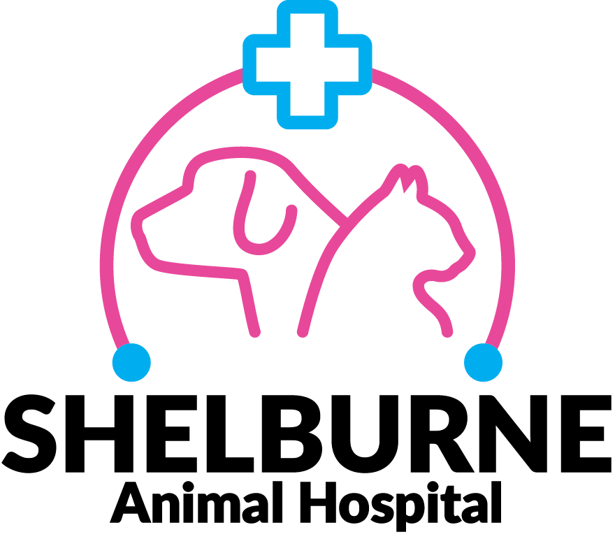 ShelBurne Animal Hospital